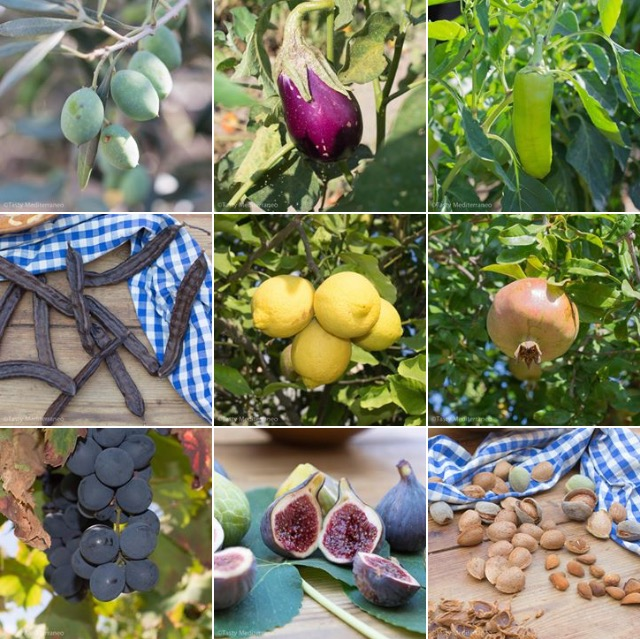 Tasty-Mediterraneo-Fruits-Legumes-Majorca
