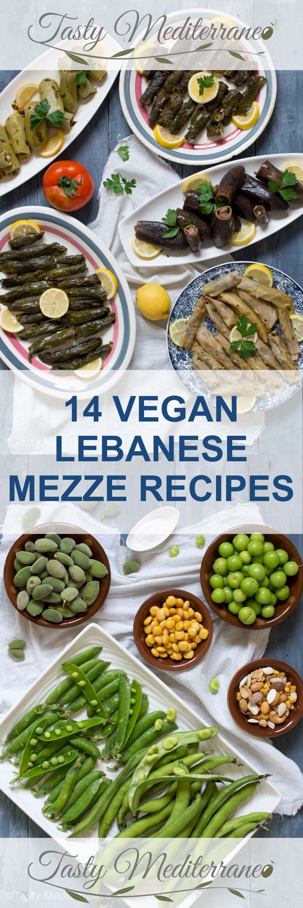 14 vegan lebanese mezze recipes tasty mediterraneo in lebanon it is very common to share a selection of small dishes called mezze with friends and family dishes that the family members have made with forumfinder Choice Image