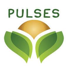 Gourmet Guru, Love Pulses
